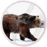 Winter Bear Walk Round Beach Towel by Athena Mckinzie