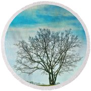 Round Beach Towel featuring the photograph Winter Blues by Gary Slawsky