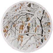 Round Beach Towel featuring the photograph Winter Branches by Ann Horn