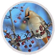 Winter Colors.. Round Beach Towel