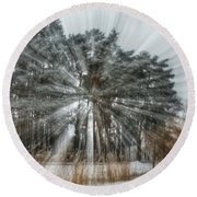 Winter Light In A Forest Round Beach Towel