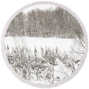 Winter Pond Round Beach Towel