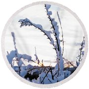 Winter Round Beach Towel by Terry Reynoldson