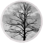 Round Beach Towel featuring the photograph Winter Tree by Andrea Anderegg