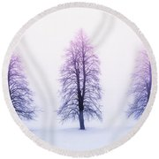 Winter Trees In Fog At Sunrise Round Beach Towel