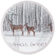 Winter Visits Card Round Beach Towel