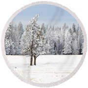 Winter's Coat Round Beach Towel by Dee Cresswell