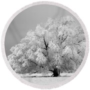 Winter's Majesty II Round Beach Towel