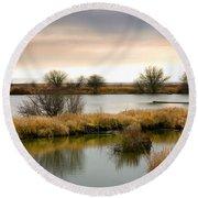 Round Beach Towel featuring the photograph Wintery Wetlands by Jordan Blackstone