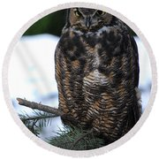 Round Beach Towel featuring the photograph Wise Old Owl by Sharon Elliott