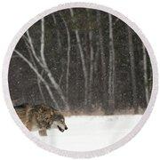 Wolf In Winter Round Beach Towel