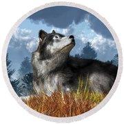 Wolf Resting In Grass Round Beach Towel