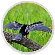 Wonderful Wings Round Beach Towel by Al Powell Photography USA