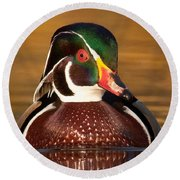 Wood Duck Round Beach Towel by Jerry Fornarotto