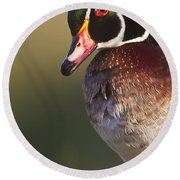 Round Beach Towel featuring the photograph Wood Duck Portrait by Bryan Keil