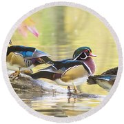 Wood-ducks Panorama Round Beach Towel by Mircea Costina Photography