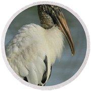 Wood Stork In Oil Round Beach Towel