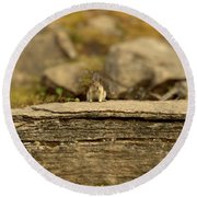 Woodland Critter Round Beach Towel