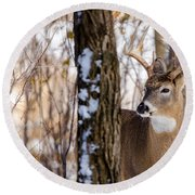 Woodland Outlaw Round Beach Towel