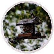 Woodpeckers At Dinner Round Beach Towel