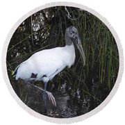 Woodstork Round Beach Towel