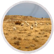 Wool You Sheep With Me Round Beach Towel