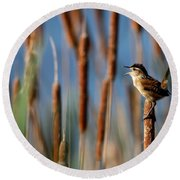 Wren Singing Round Beach Towel by Kenny Glotfelty