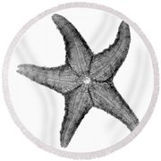 X-ray Of Starfish Round Beach Towel