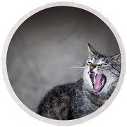 Yawning Cat Round Beach Towel