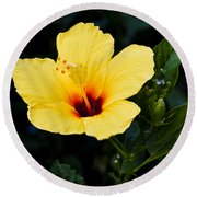 Yellow And Red Hibiscus Round Beach Towel