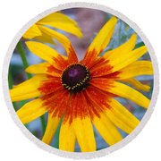 Round Beach Towel featuring the photograph Yellow Burst by Allen Beatty