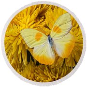 Yellow Butterfly On Yellow Mums Round Beach Towel