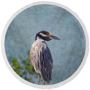 Yellow Crowned Night Heron Round Beach Towel
