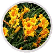 Yellow Daylilies Round Beach Towel