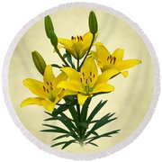Yellow Lilies Round Beach Towel by Jane McIlroy