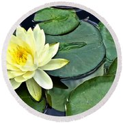 Yellow Lotus - Botanical Art By Sharon Cummings Round Beach Towel