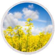 Yellow Mustard Field Round Beach Towel