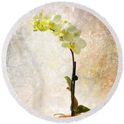 Round Beach Towel featuring the photograph Yellow Orchid by Patti Deters