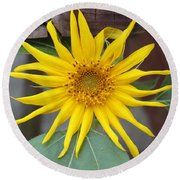 Yellow Pinwheel Type Flower Round Beach Towel