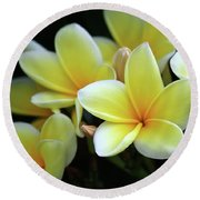 Yellow Plumeria Cascade Round Beach Towel