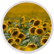 Round Beach Towel featuring the photograph Yellow by Ronda Kimbrow