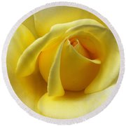 Yellow Rose Softness Round Beach Towel