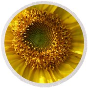 Round Beach Towel featuring the photograph Yellow Sunshine by Neal Eslinger