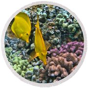 Yellow Tang Pair Round Beach Towel by Peggy Hughes