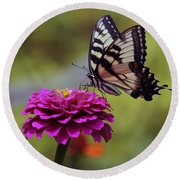 Yellow Tiger Swallowtail Butterfly Round Beach Towel