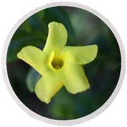 Round Beach Towel featuring the photograph Yellow Trumpet Flower by Ramabhadran Thirupattur