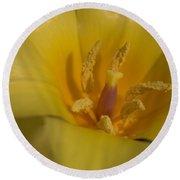 Yellow Tulip Detail 3 Round Beach Towel
