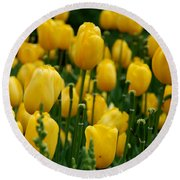 Yellow Tulip Sea Round Beach Towel