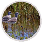 Round Beach Towel featuring the photograph Yellowlegs Of Texas by Gary Holmes