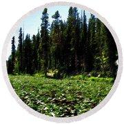 Yellowstone Lily Pads  Round Beach Towel